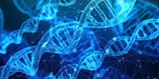 La genetica dell'infertilità è ampiamente trattata nel libro di Lisa Olson