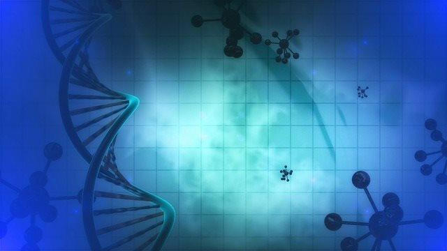 PCOS e predisposizione genetica